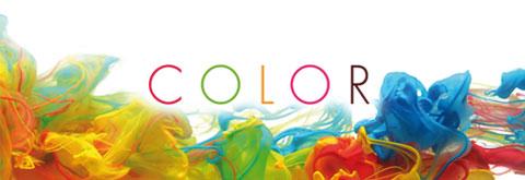 Colección Color J.Roca